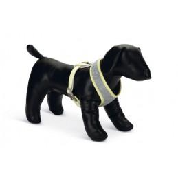 BZ borsttuig voor puppy's  bronda grijs maat M