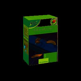 Slakkenlokstof voor slakkenvallen