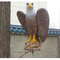 Winged Eagle met draailager