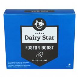 Dairy Star Fosfor Boost bolus