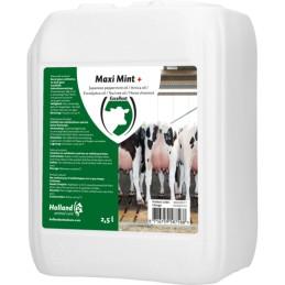 Maxi Mint uiermint 2.5 liter