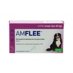 Amflee 402mg spot-on hond...