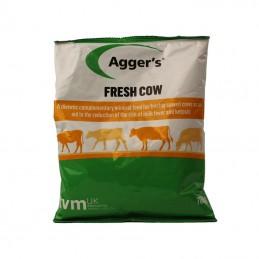 Fresh Cow 700 gram