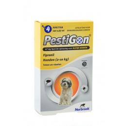 Pestigon hond 2-10kg 4...