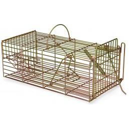 Inloopval rat levend massa