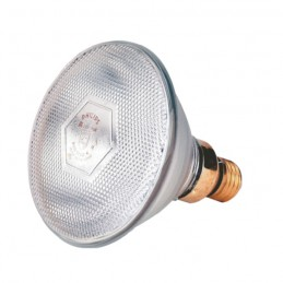 Philips Warmtelamp 100 watt wit