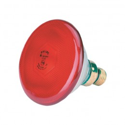 Philips Warmtelamp 100 watt rood