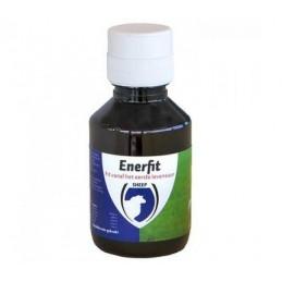 Enerfit snel start lam / geit 100ml