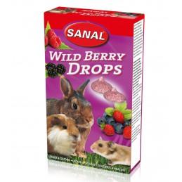 Sanal Bosvruchten Drops voor Knaagdieren 45 gram
