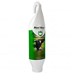 Maxi Mint Plus uiermint 1 liter