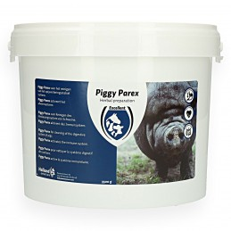 Piggy Parex 3500 gram