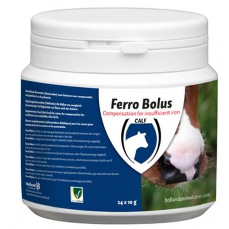 Ferro Bolus Kalf 24st