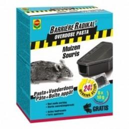 Compo Barrière Radikal pasta 8x10 gram