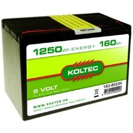 Batterij 9 Volt - 1250 Wh 160 Ah Alkaline