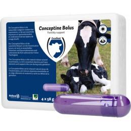 Conceptine Bolus