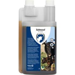 Salmocol voor kalveren 500 ml