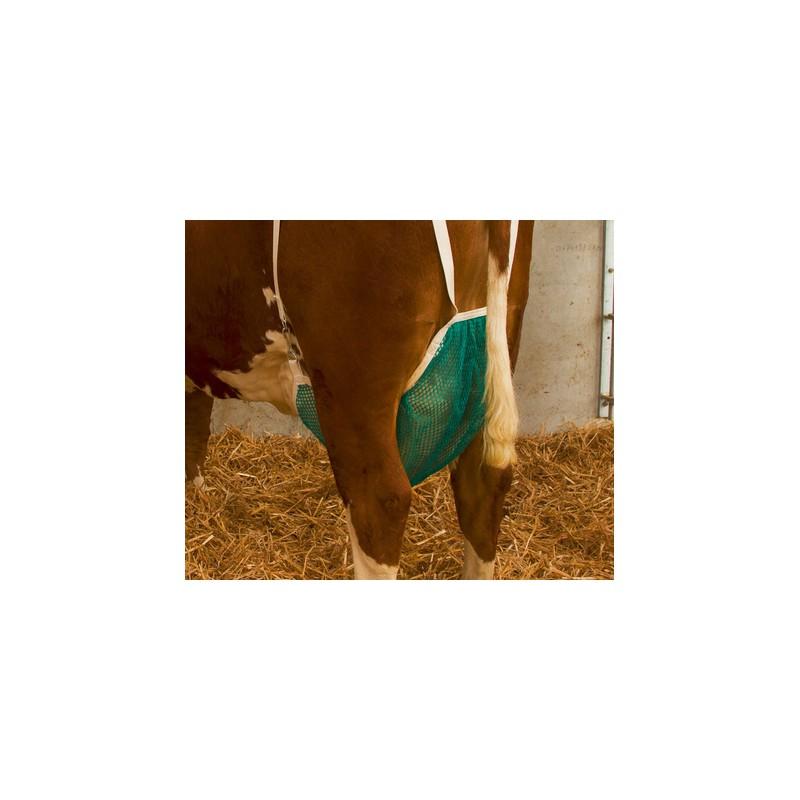 Uiernet koe compleet XL