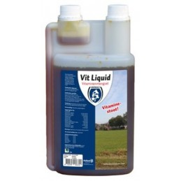 Vit Liquid Multivitamine 1L