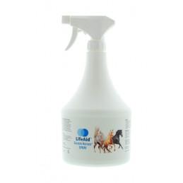 Sioskin Horses