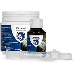 Vit Liquid Multivitamine 100 ml
