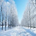Winterartikelen kopen?