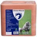 Likstenen en Likemmers voor schapen